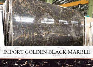 Import Golden Black Marble